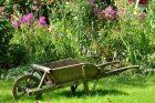 Zahrada (ilustrační foto)