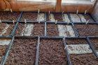 Přelom února a března je vhodný pro výsev bazalky, meduňky nebo saturejky