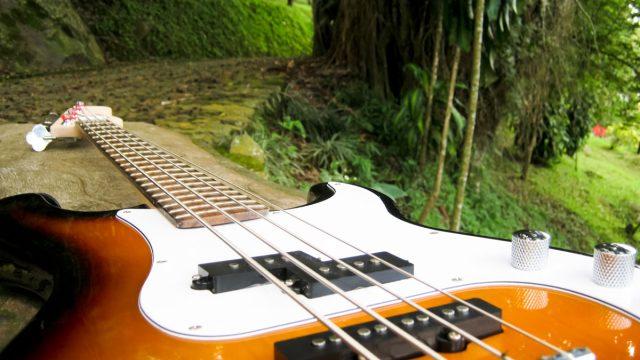 Kytara v přírodě