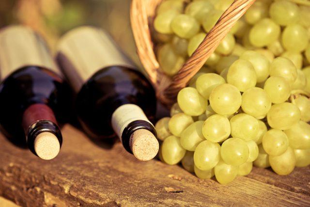 Vinařův rok vás provede dvanácti měsíci práce na dobrém víně.
