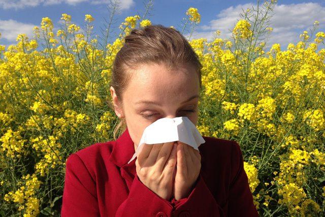 Jarní alergie (ilustrační foto)
