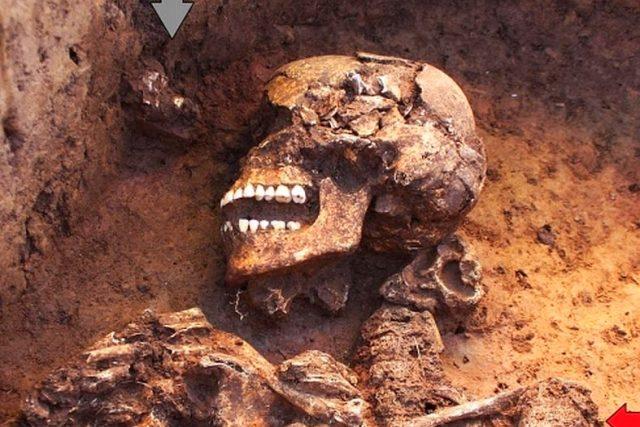 Nálezová situace,  pohled na horní část těla. Na distálním konci levé pažní kosti je patrna neuzavřená růstová štěrbina  (červená šipka). Před obličejovou částí lebky byly nalezeny zlomky kostí a článek palce pravé nohy  (šedá šipka) | foto: Regionální muzeum a galerie v Jičíně ,  oddělení archeologie