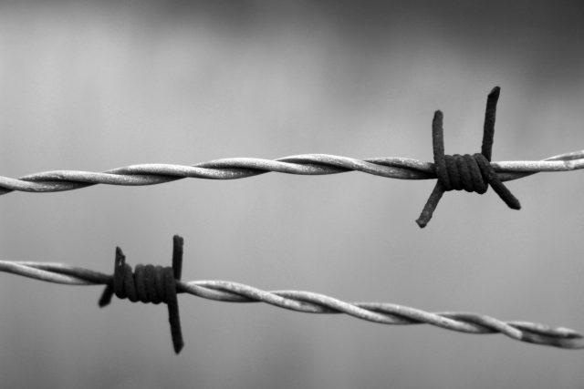 Když Rusové v lednu 1945 osvobodili koncentrační tábor v Osvětimi,  nebyl tam už ani jeden Rom. Všichni byli zlikvidováni. | foto: Fotobanka Pixabay,  CC BY 1.0